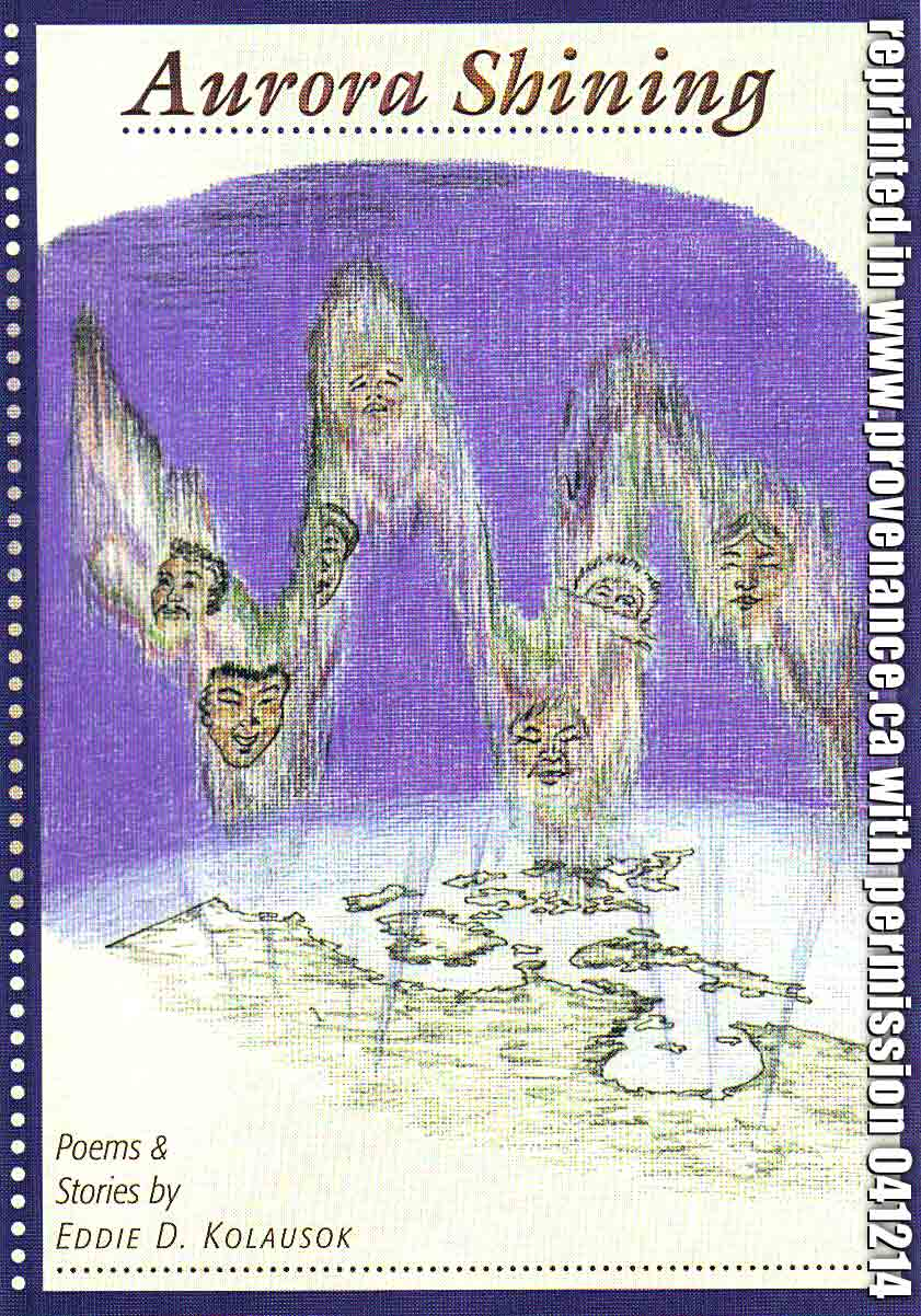 scanned book cover from AURORA SHINING